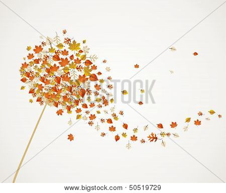 Fall Season Dandelion Tree Leaves Composition Background Eps10 File.