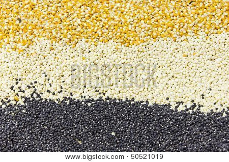 Assorted Grains