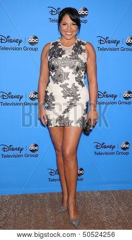 LOS ANGELES - AUG 04:  Sara Ramirez arrives to ABC All Star Summer TCA Party 2013  on August 04, 2013 in Beverly Hills, CA