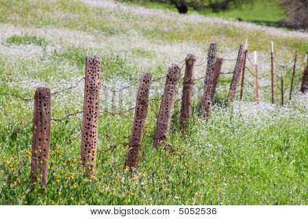 Old Barb Wire And Wooden Fence With Damage