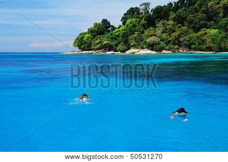 People Swimming And Snorkeling At Tachai Island In Thailand