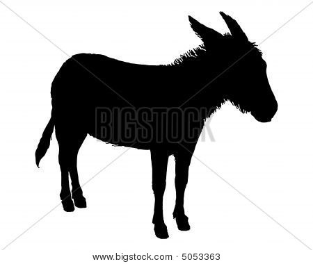 The Black Silhouette Of A Donkey On White