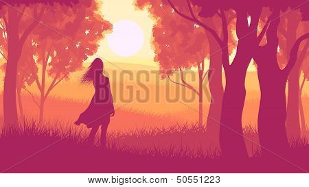 Horizontal Illustration Within Forest With Silhouette Girl In Sunset.