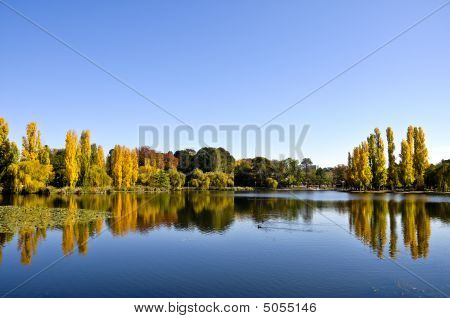 Water reflections in Narang Pond of Canberra Australia