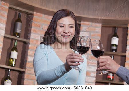 Mature Couple at a Winetasting, Toasting
