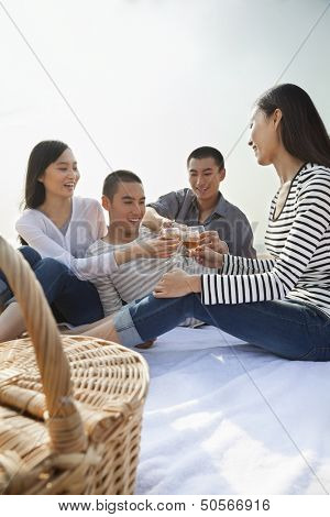 Young Friends Toast Each Other at Their Picnic on the Beach