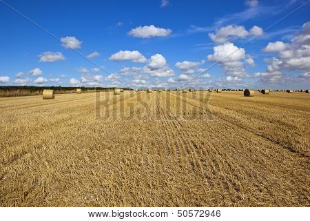 Round Bales At Harvest Time
