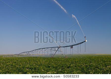 Modern Irrigation Pivot