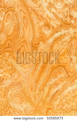Real Wood Grain Texture
