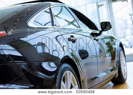 Back view of automobile in sales salon