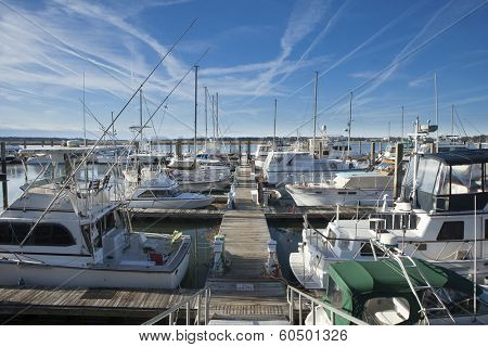 dock and marina in Beaufort, South Carolina