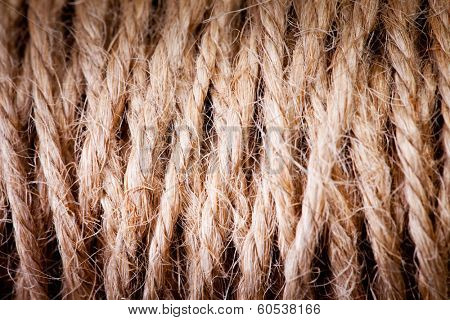 thread in clew close up