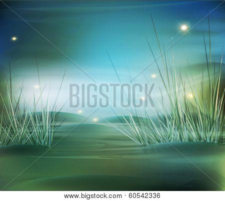 landscape, marsh