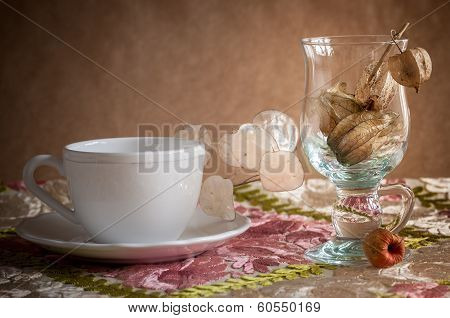 Physalis in glass vase