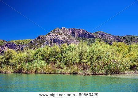 Landscape of Dalyan river