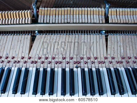 Piano keys and beyond.