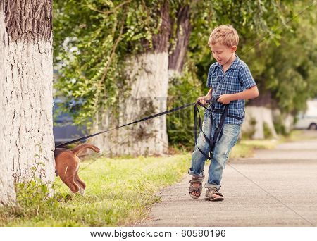 Little Boy Walking His Puppy