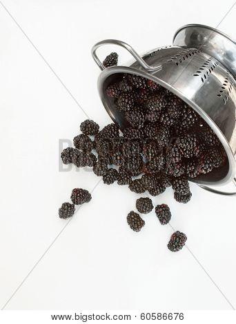 Fresh Organic Blackberries