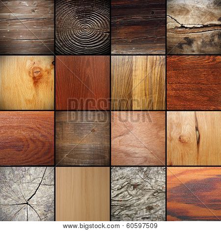 Large Collection Of Wood Textures