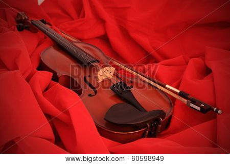 Violin Front View Isolated On Red