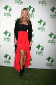 LOS ANGELES - FEB 26:  Carolin Copeland at the Global Green USA Pre-Oscar Event at Avalon Hollywood
