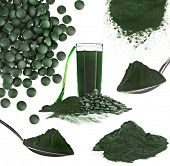 stock photo of green algae  - Spirulina algae powder glass drink nutritional supplement close up collage  - JPG