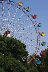 pic of ferris-wheel  - Long shot of ferris wheel in the park - JPG