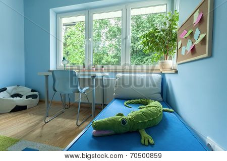 Little Boy Room From The Inside