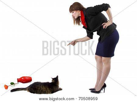 Scolding A Cat