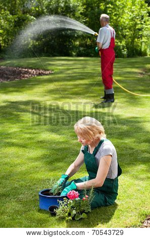 Couple During Everyday Duties In Garden