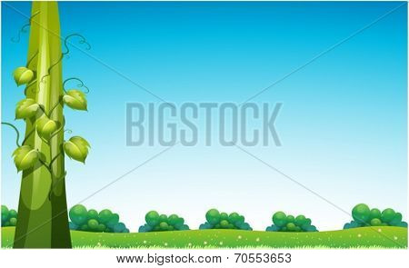 Illustration of a view with beanstalk