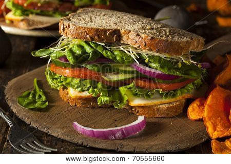 Healthy Vegetarian Veggie Sandwich