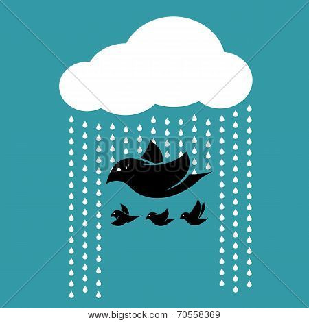 Birds flying In the sky when It rains.