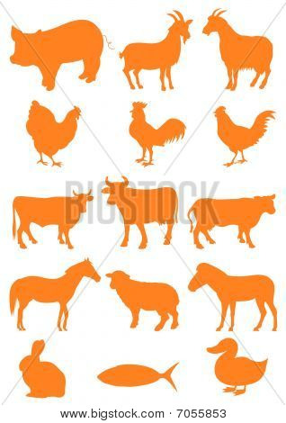 Set of farm animal shapes