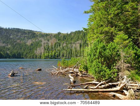 Black Lake in Czech Republic