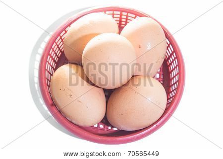 Egg In The Plastic Basket Isolated