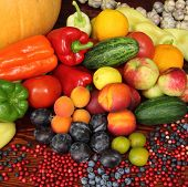 picture of plum tomato  - Ripe vegetables and fruits - JPG