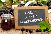 pic of blackberries  - Slate blackboard with the words - JPG