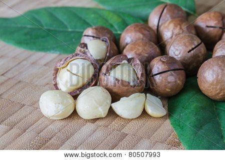 Macadamia On Wood Table.