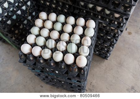 Eggs Preserved In Panel Wholesale Market