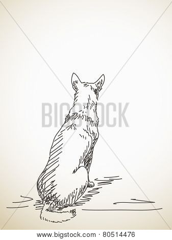 Sketch of sitting dog from back. Hand drawn illustration. Isolated