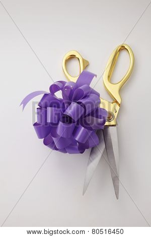 opening ceremony concept purple ribbon bows and gold scissors