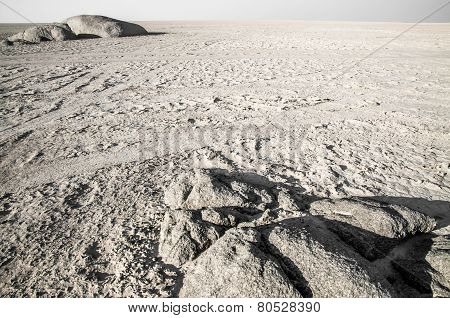 Salt Pan Landscape