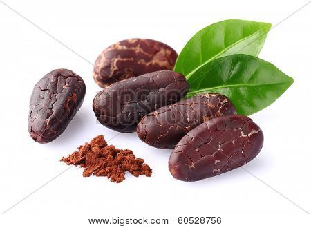 Cacao beans with cacao powder