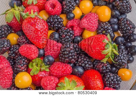 Mixed Berries Up Close