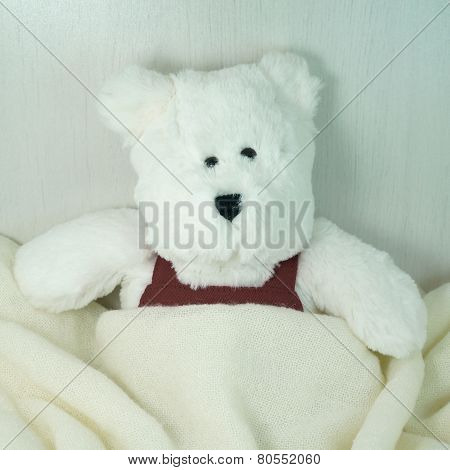 White Bear Toy Under Blanket