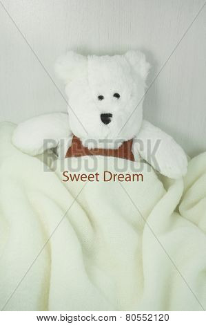 Sweet Dream Bear