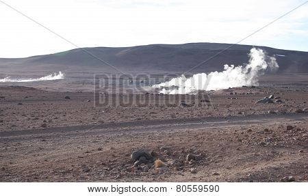 Geysers in Bolivia
