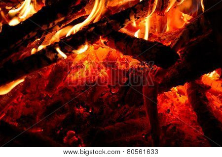 Burning wood in the fire