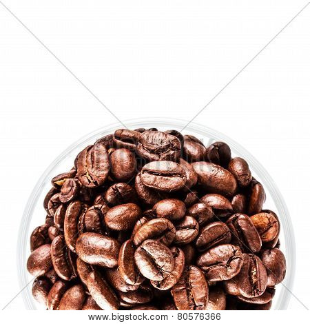 Brown Coffee Beans Isolated On White Background Macro. Roasted Coffee Beans Background Texture.